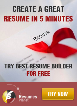 Hire professional resume writers at wwwResumesPlanetcom